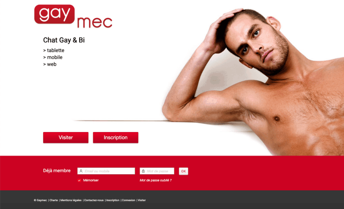 Présentation accueil du site Gaymec